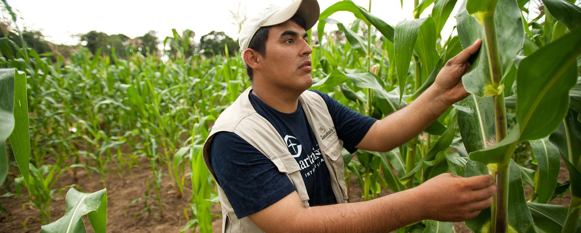 Samaritan's Purse: Animals, Agriculture & Livelihoods