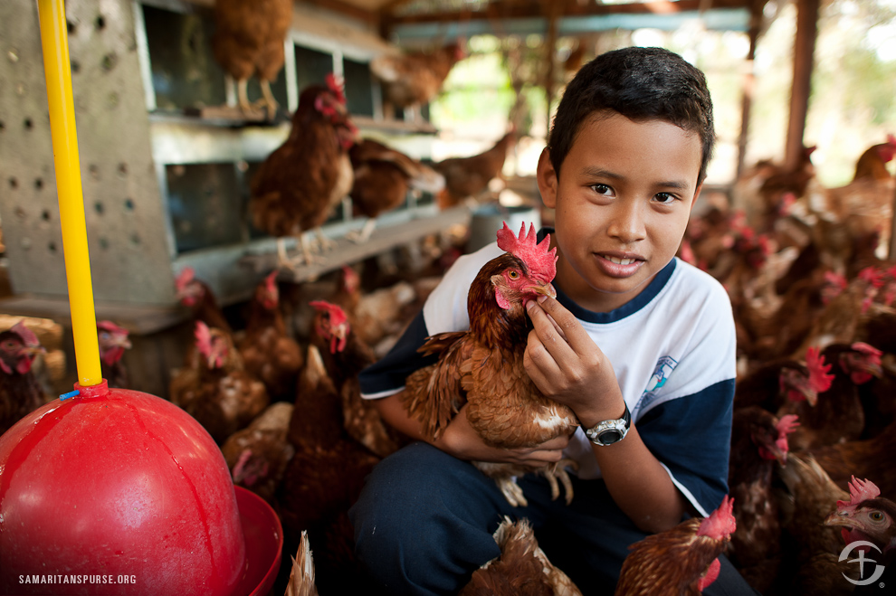 This Bolivan boy's family received chickens from Samaritan's Purse, which not only helps supply food for his family, but also helps generate income as they sell eggs to the community.