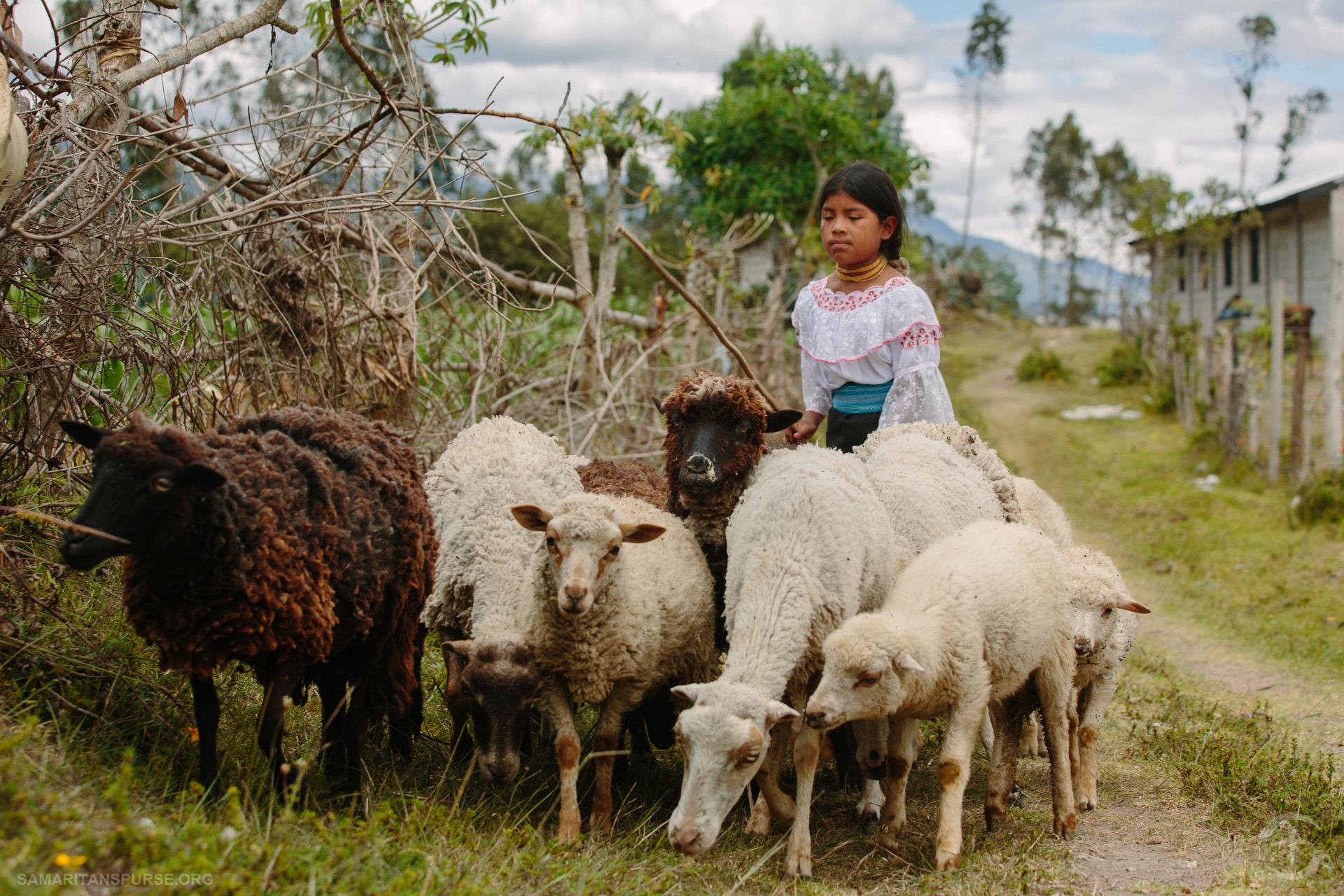 Christmas In Ecuador, Day Two