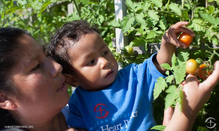 Bolivia Children's Heart Project
