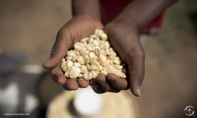 Mozambique Feeding