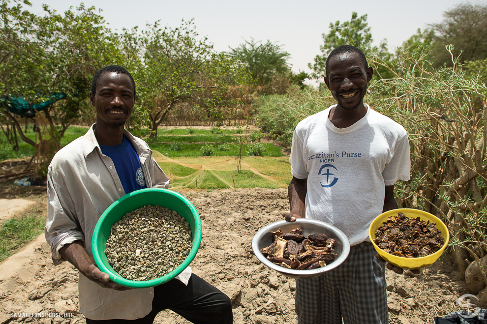 Men in Niger show their harvest which was made possible through Samaritan's Purse agricultural programs.