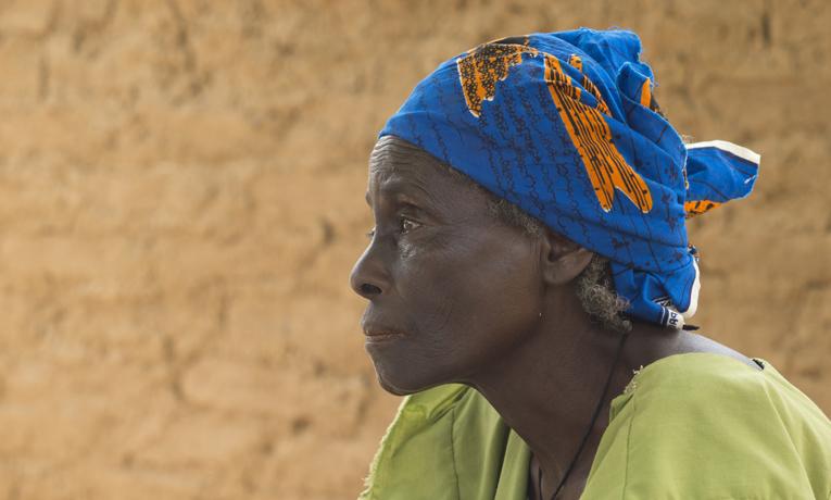 Niger Raise a Village