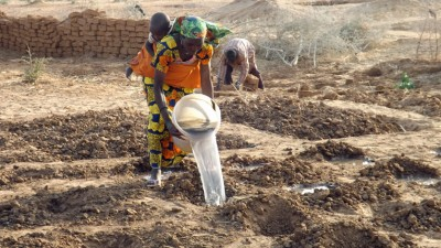 Changing a Community in Niger