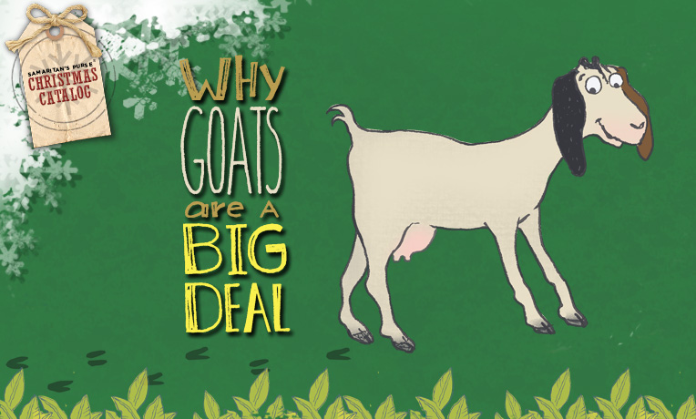 Why Goats are a Big Deal