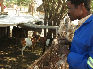 Raquel and her husband received two goats from Samaritan's Purse.