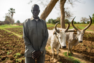 Bul Bul Akon, Ox plow recipient. SP provided plows and training on how to cultivate land with oxen.