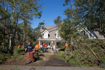 Volunteers remove debris and trees