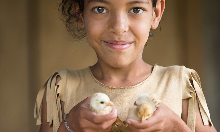 For impoverished families, a brood of chicks can become a daily reminder of God's faithfulness, as their eggs provide nutritious food as well as income. For $14, we can supply a dozen chicks, help a family set up a coop, or offer basic veterinary care.