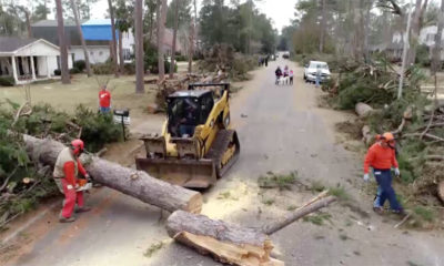 Albany Georgia storm cleanup