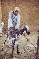 A community animal health worker.