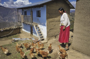 Samaritan's Purse provided some of these chickens to the family. Rustic home surrounded by mountains.