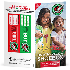 Christmas Shoe Box 2020 Order Free Operation Christmas Child Materials