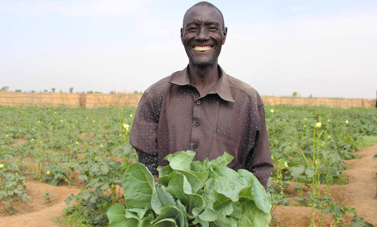 Samaritan's Purse is working to bring hope to a desperate nation through projects such as agricultural training.