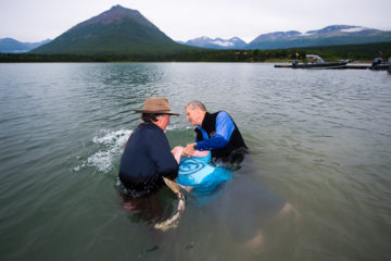 David is baptized in the chilly waters of Lake Clark.