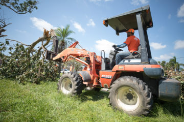 Juniper Landscaping partnered with Samaritan's Purse, using heavy equipment to clear huge trees.