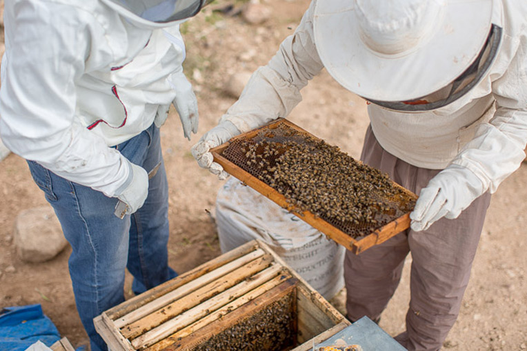 Our staff apiarist (left) inspects a hive for a farmer (right) who provides for 10 family members with the proceeds from his bees.