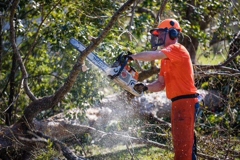 Work in the Florida Panhandle continues with volunteers removing downed trees.