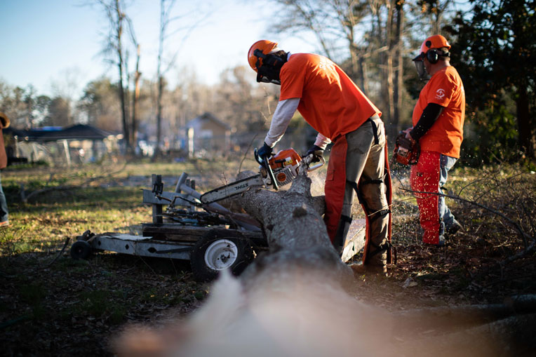 Volunteers are chainsawing large downed trees in Lee County, Alabama, after recent tornadoes.