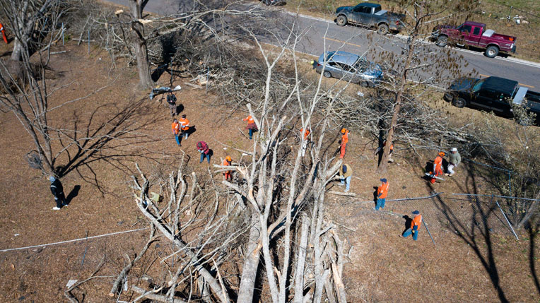A drone shot captures active volunteers working on massive downed trees in Alabama.