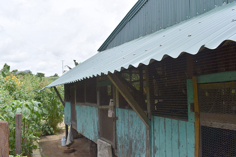 Samaritan's Purse replaced the roof of Edmund's chicken coop with storm-resistant material.