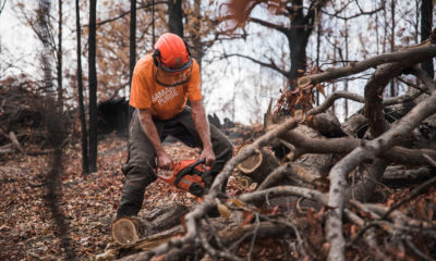 Chainsaw work is needed to clear properties and remove debris.