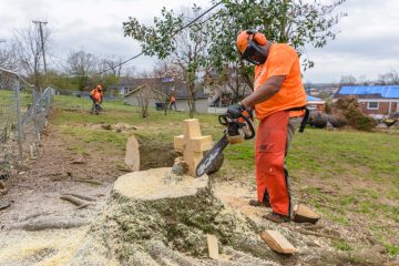 Marine Sergeant Robert Bogus cut the log of a cherished magnolia tree into the shape of a rugged cross.
