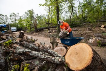 Volunteers helped clean up trees at the Netterville home where an EF-3 tornado toppled pines and hardwoods.