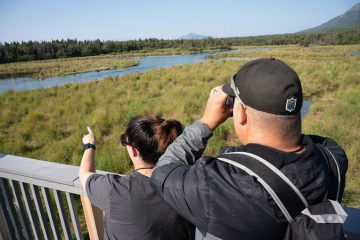 Kyli and Josh Abbatoye enjoyed bear viewing in Katmai National Park.