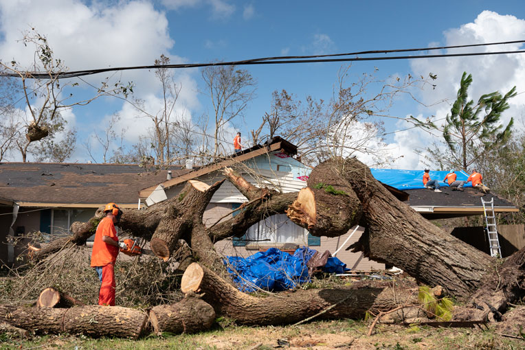Hurricane-toppled trees, like this giant oak at Garrison Worthington's home, crisscross many yards and neighborhoods throughout southwest Louisiana.