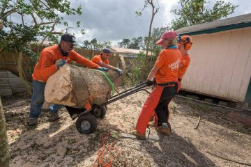 Volunteers carted away large fallen trees a piece at a time.