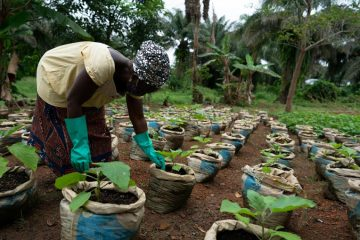Through the Eden Project, Teter Washington learned how to increase yields and profits to feed and support her family.