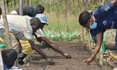 Through agriculture programs, disabled residents in eastern DRC are learning more effective growing techniques. Agriculture programs in democratic republic of congo