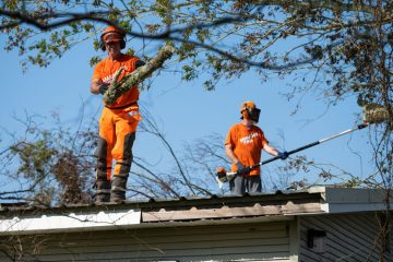 Volunteers removed fallen trees and debris from the Harper's roof.